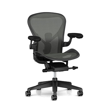 A Size - Adjustable PostureFit SL Support - Graphite Finish - Graphite 8Z Pellicle Suspension Material (Seat and Back)